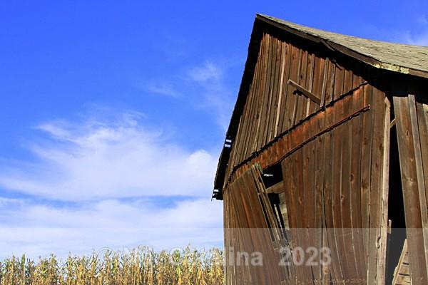 Bent Barn - Olde Things