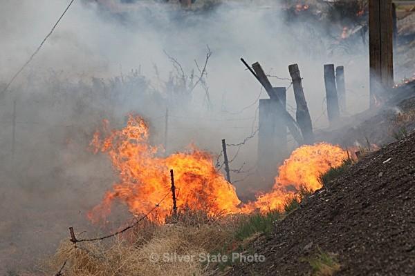 Brush Fire - Fallon/Churchill Fire Department