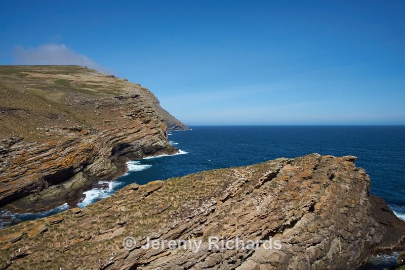 Albatross Rookery - West Point Island
