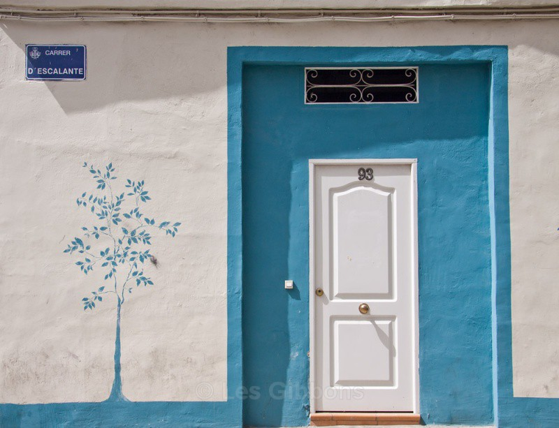 old port blue tree - Valencia