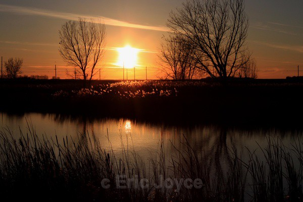 Golden Sunset - Marshall, Minnesota