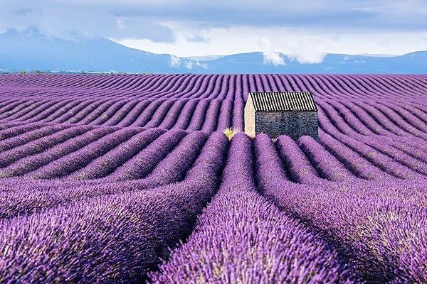 - France