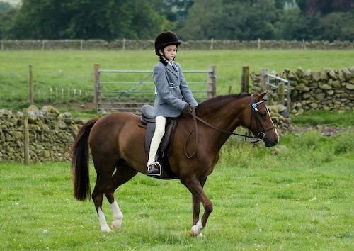 44 - Moniaive Horse Show 2008