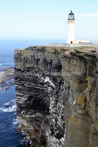 Westray, Noup Head - Orkney Images