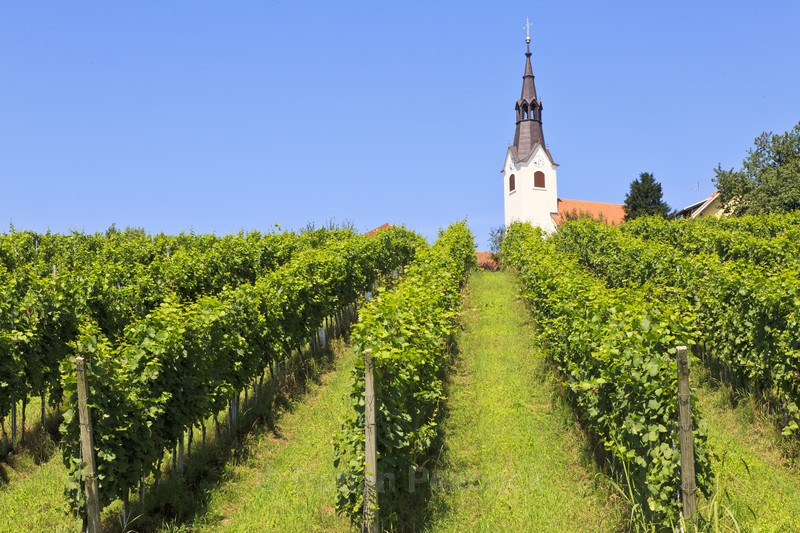 Vineyard church - Slovenia and Tuscany