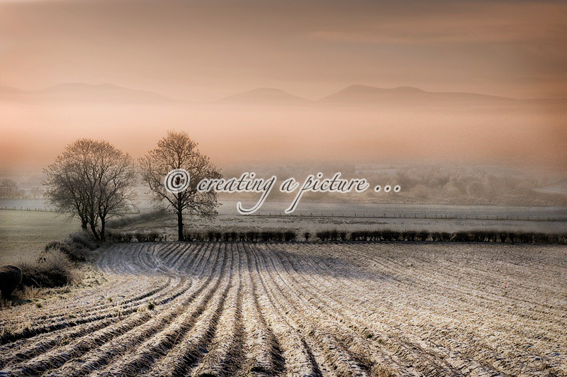 Mourne Winter Landscape - Landscapes