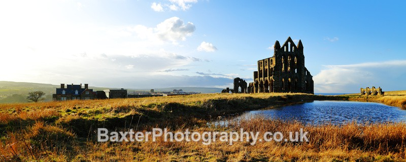 Late Sun At Whitby Abbey (2.5' x 1') - Whitby