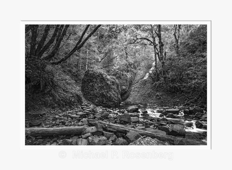 Rapids and Fall, Bridal Veil Falls, OR (2014/D01105) - Pacific Coast