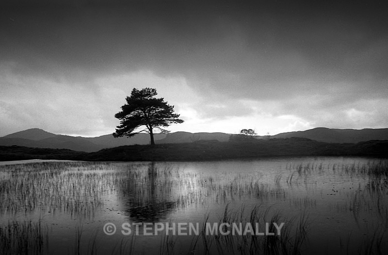 Kelly Hall Tarn English Lake District - Images made on Film