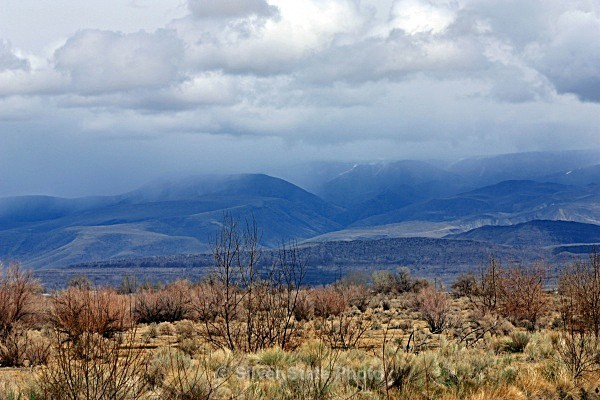 Storm in the Stillwater Mountains - Nevada (mostly) Landscapes