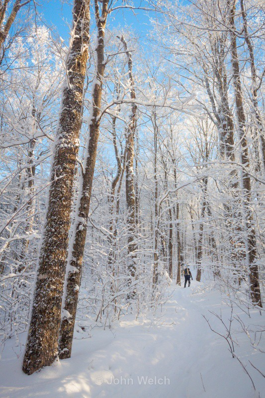 Winter Hiking to Waumbek - Winter