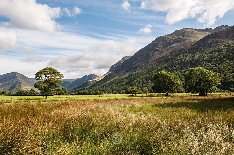 Buttermere View - Lake District