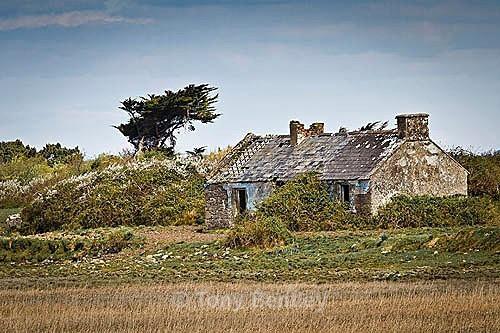 Abandoned Cottage - Ireland