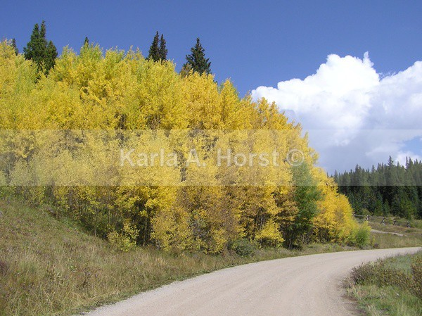 Fall on Boreas Pass - Photos