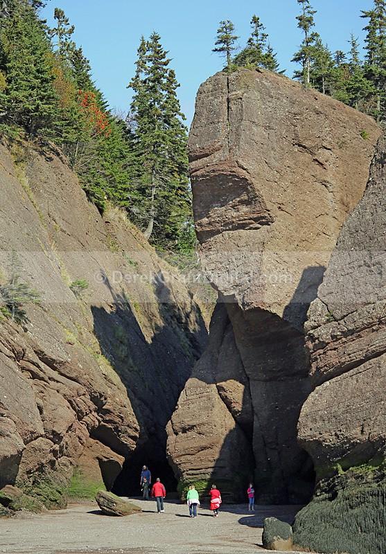 Hopewell Rocks - The Elephant - The Rocks @ Hopewell Cape