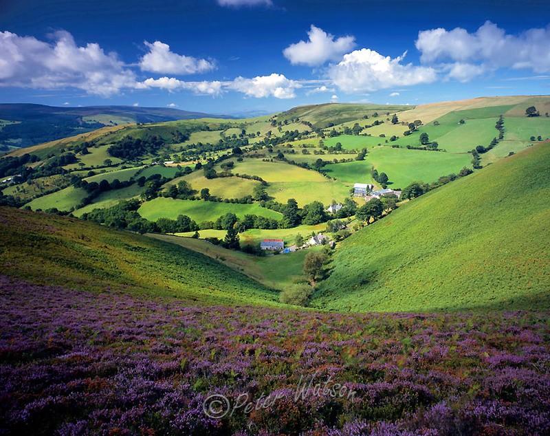 Llantysilio Clwyd - Wales