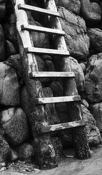 Sea Ladder - Linear