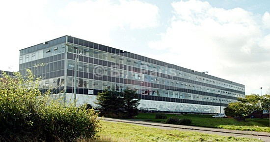 Larkhall Academy 5269 - Land and Sea