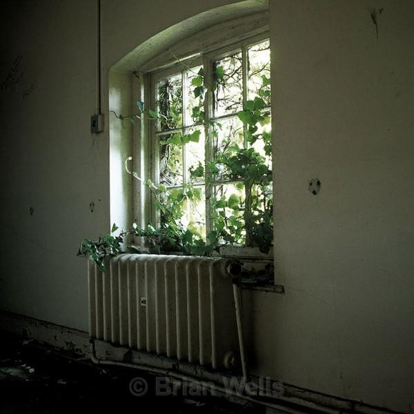 Interior at Hales Hospital. - Windows and Doors/ Curtains and Wallpaper