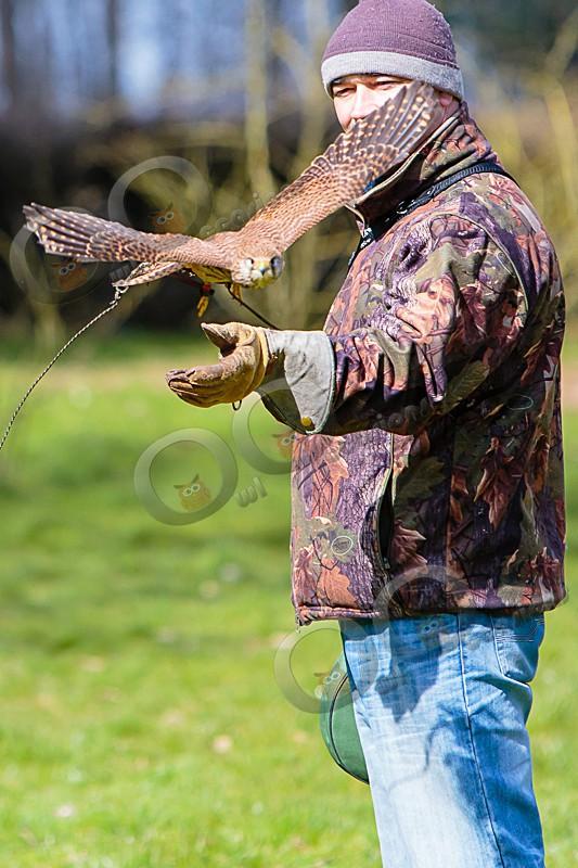 Paul with Tin Tin - Our Birds