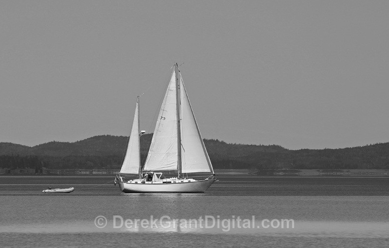 Sailing the Bay of Fundy - Boats