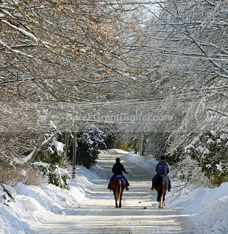 Horseback Riding on Almon Lane - Winterscape