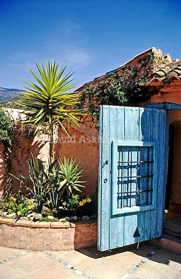 Blue door - Gardens & plants