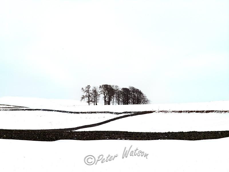 Thornton Rust Yorkshire England - Elemental