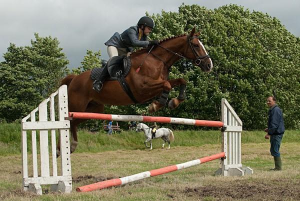 16 - Moniaive Horse Show 2010