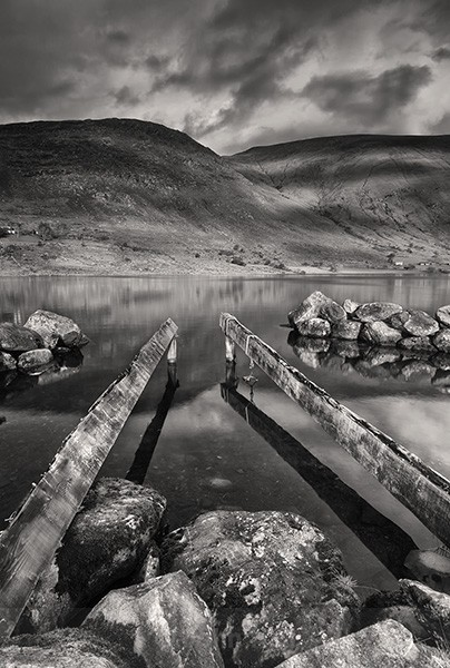Fine Art Monochrome Of Old Timbers, Lough Brin, Co. Kerry, Ireland.