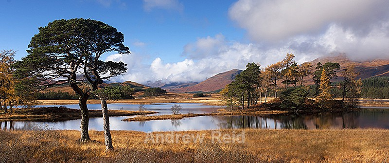 Loch Tulla Scottish Highlands - Landscapes