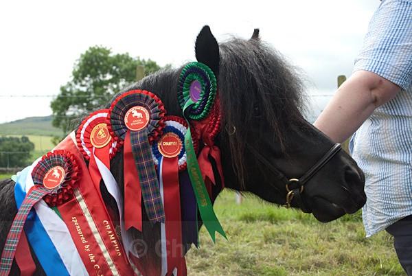 30 - Moniaive Horse Show 2010