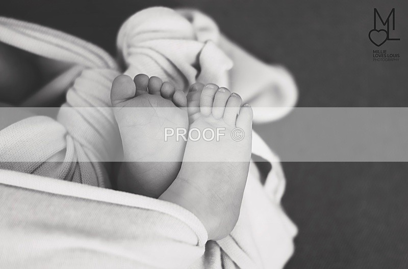 DSC_4115port - Newborn Photoshoots