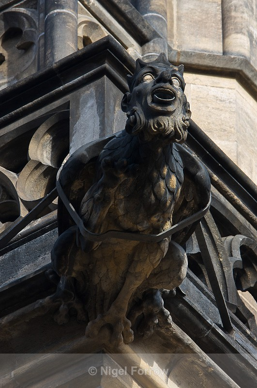 Gargoyle, St. Vitus's Cathedral, Prague - Prague, Czech Republic